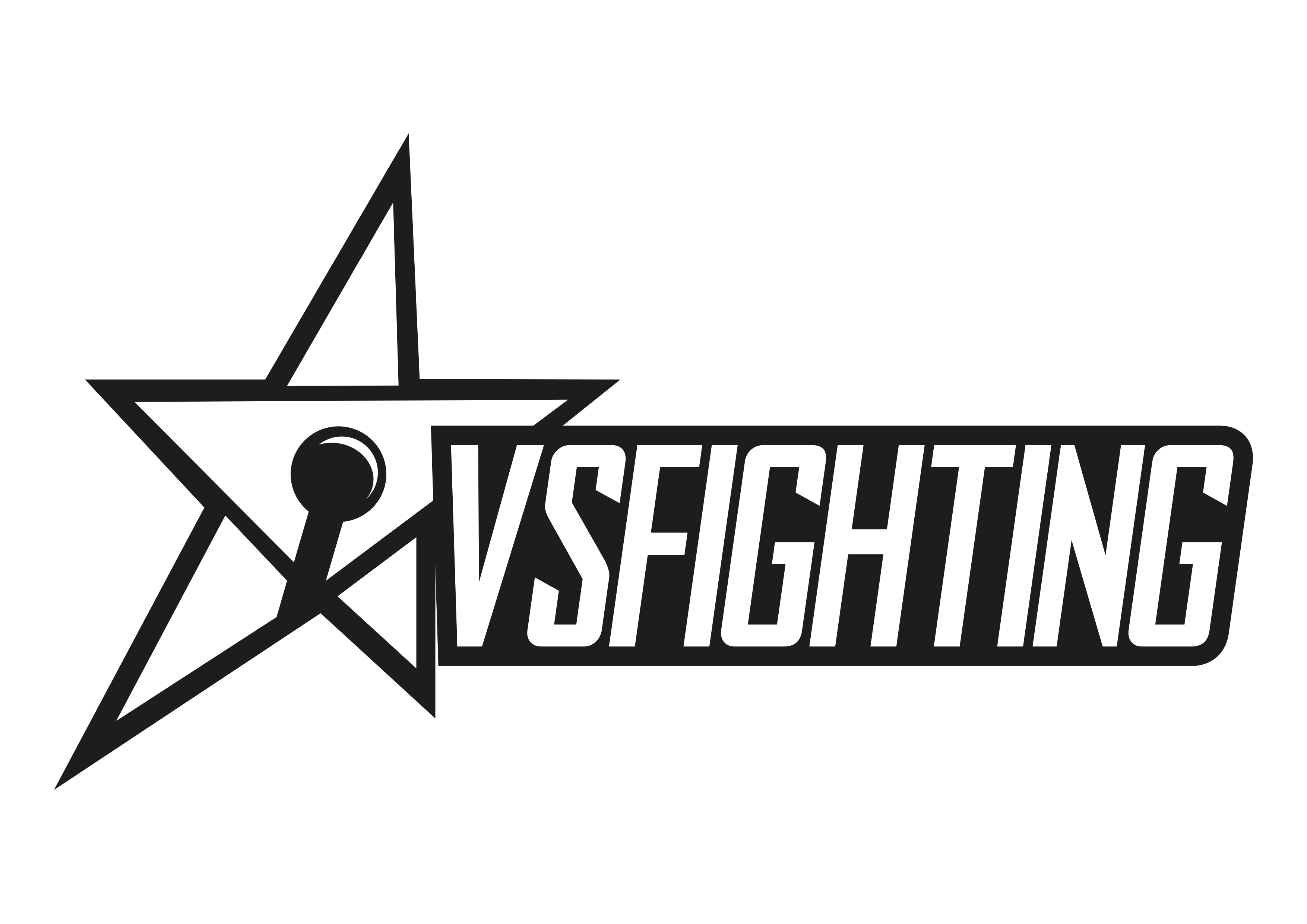 VSFighting X